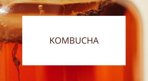Discovering the secrets of making kombucha
