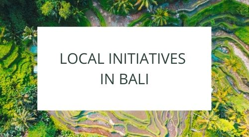 Local communities and initiatives in Bali