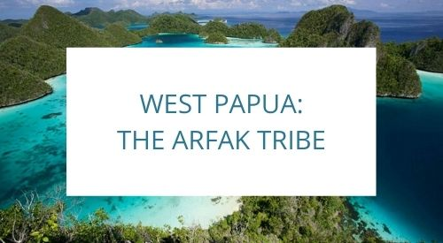 The Arfak Indigenous Tribe, West Papua