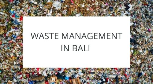 How waste management works in Bali