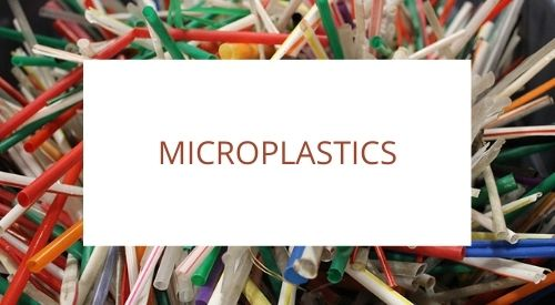 The impact of microplastics to our Environment