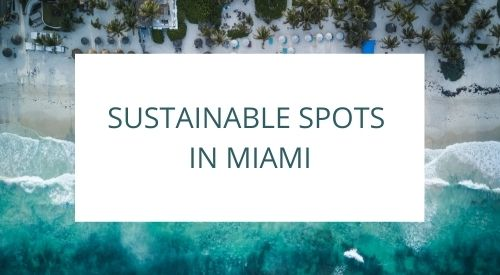 Discovering sustainable spots in Miami, FL