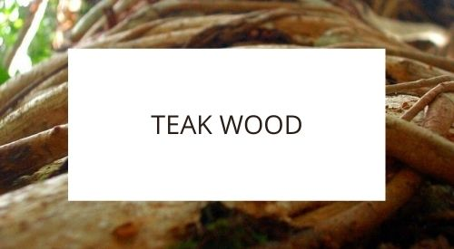 Is teak wood sustainable?