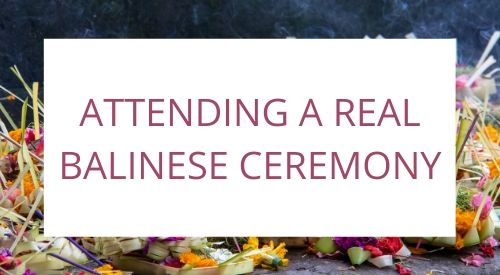 Attending a REAL BALINESE CEREMONY