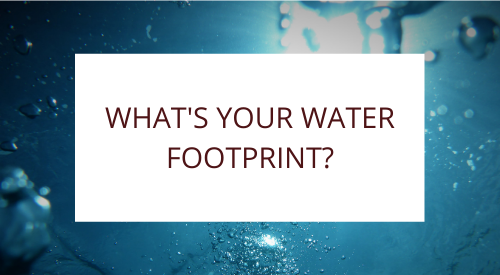Do You Know What Your Water Footprint Is?