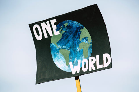 individualism and the climate crisis