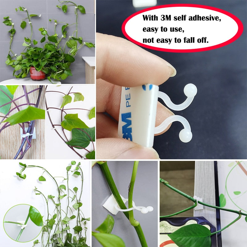 Vine Self-Adhesive Buckle Hook (10PCS/50PCS)