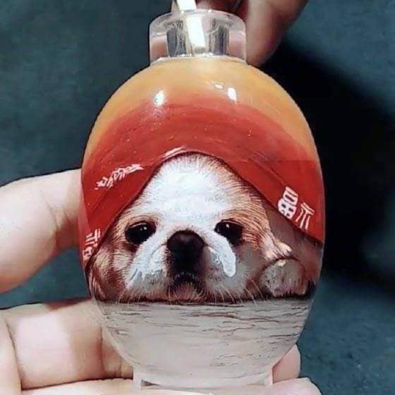Snuff-bottle with Inside Painting