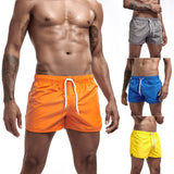 Multi-color Swimwear Mens Quick Drying Swimming Trunks