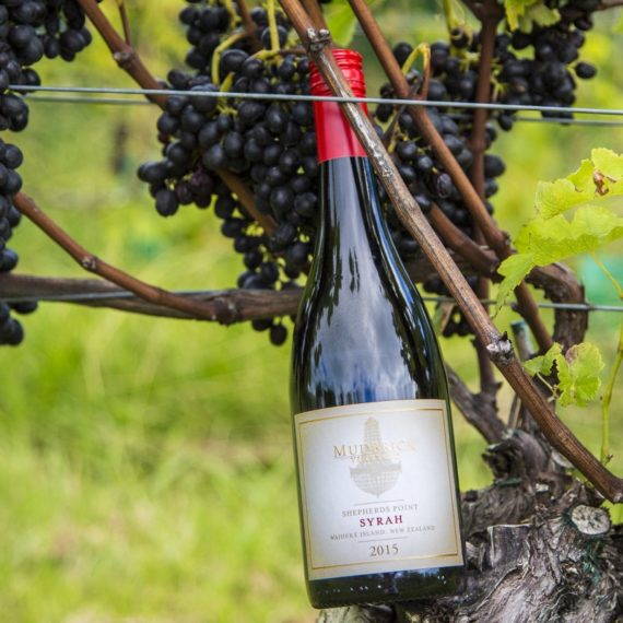 "Mudbrick ""Shepherd's Point"" Syrah 2018"