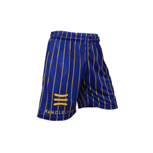 Load image into Gallery viewer, Handlelife Shorts - Yellow Stripe