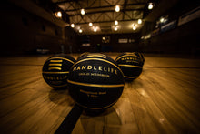 Load image into Gallery viewer, Handlelife Heavy Basketballs