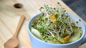 Bowl with broccoli sprouts and fruits
