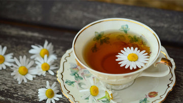 Tea cup with herbal tea and chamomile flowers