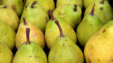 Pears (Pyrus comunis) fruits