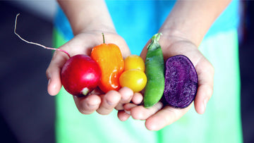 Colorful vegetables red radish orange pepper yellow tomatoes green bean pod violet beet
