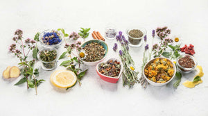 Fresh peppermint leaves around herbal tea cup