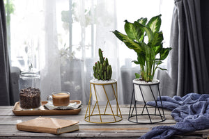 Twist Stand & Planter - HomelyHome [Free Shipping]