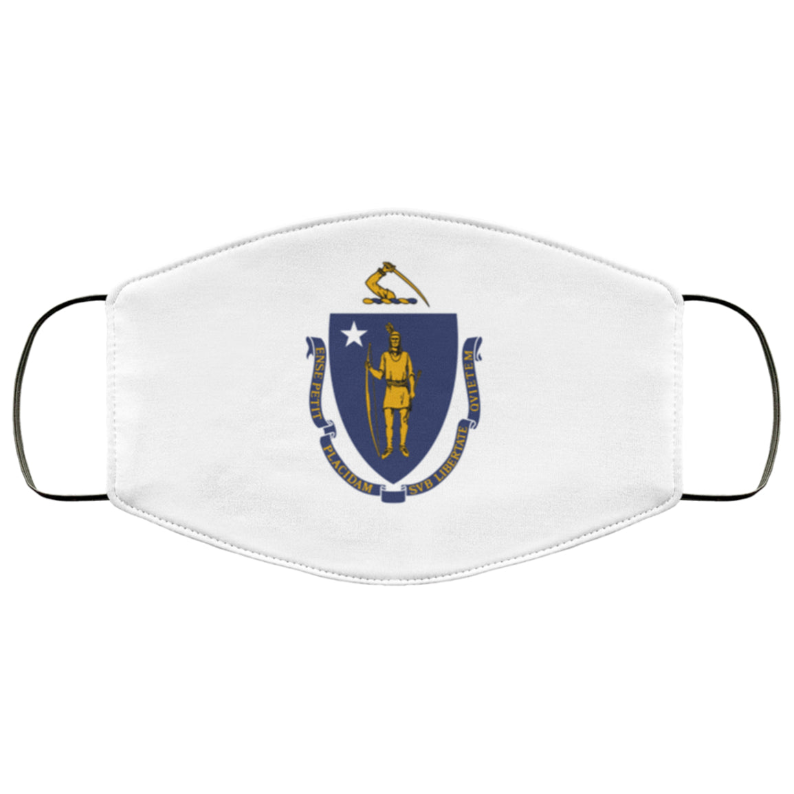 Massachusetts State Flag USA Face Mask