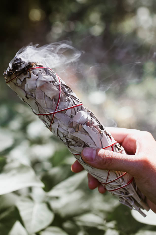 White Sage for smudging - large