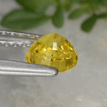 0.75 ct  Round Facet Yellow Golden Sapphire 5.1 mm