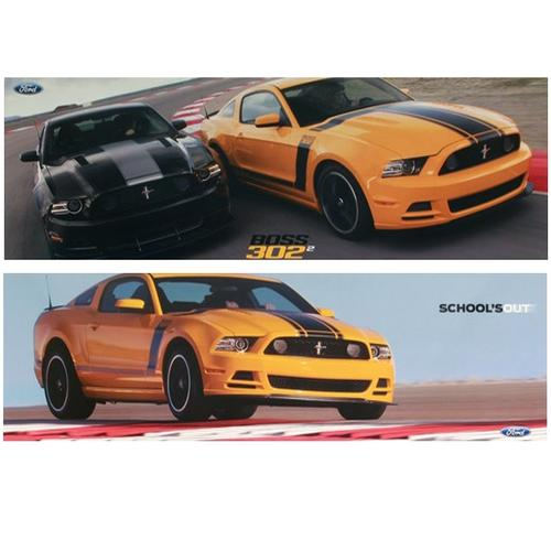 2013 2-sided BOSS 302 Poster