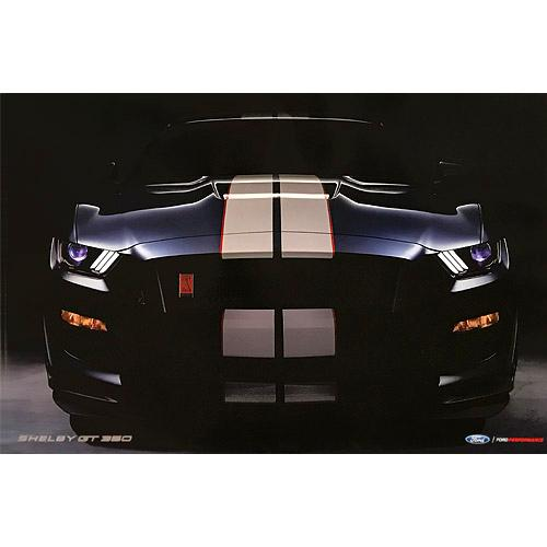 Ford- 2018 2-Sided Shelby GT350R Poster