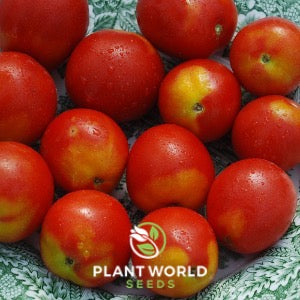 Image Source: Plant World Seeds. Used by Permission.