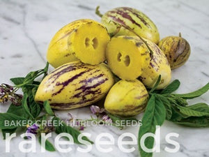 Image Source: Baker Creek Heirloom Seeds / RareSeeds.com. Used by Permission.