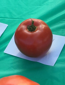 "Tomato ""Eva Purple Ball"""