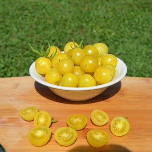 "Tomato ""Lemon Drop"""
