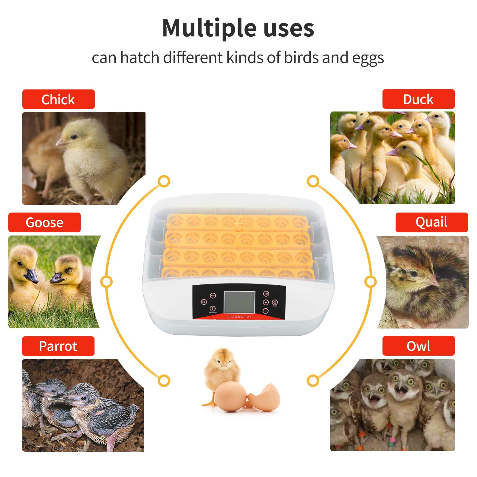 32 Eggs Digital Egg Incubator with Automatic Egg Turning and Humidity & Temperature Control, LED Candler