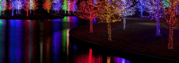 Can Holiday Lights Installation Be Profitable For Your Business?