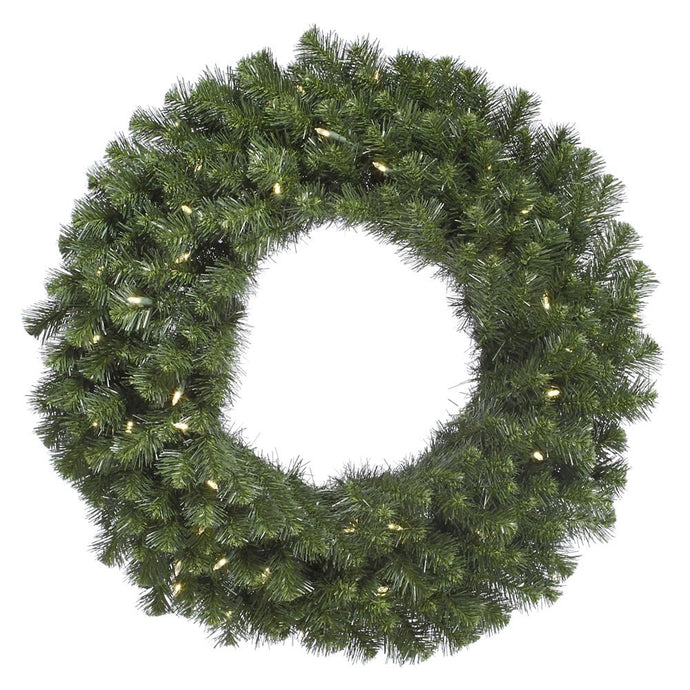 24 inches Douglas Fir Wreath 200T 50WmWht LED
