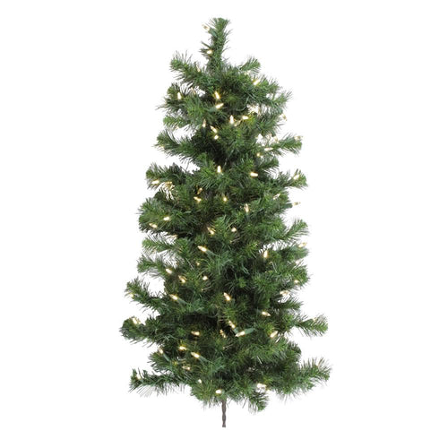 3 inches x 21 inches Douglas Wall Tree 100WmWh LED