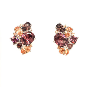 Multicolor Stone Stud Earrings