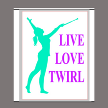 Load image into Gallery viewer, 12x16 inch wood sign Live Love Twirl