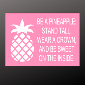 12x16 inch wood sign Be a pineapple. Stand tall.