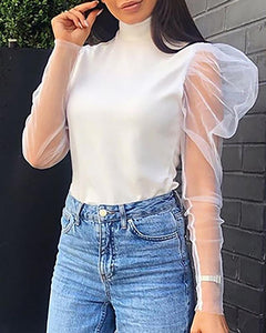 High Neck Sheer Mash Insert Blouse