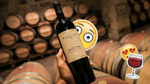 Discover Maltese wine through a unique experience