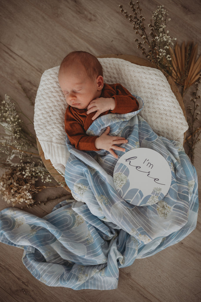Eventide & Ice Blue Baby Milestone Cards
