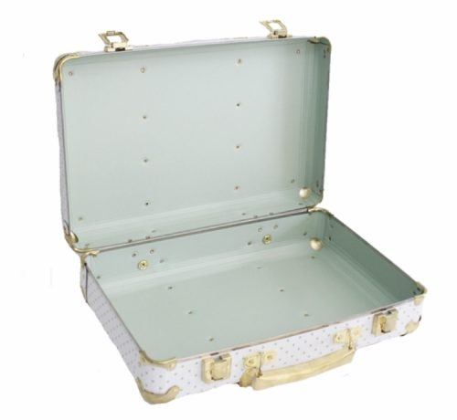 Vintage Style Carry Case - Sage Spot