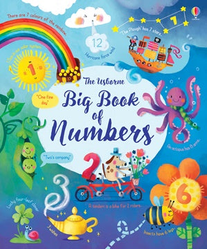 The Big Book of Numbers - Hardcover