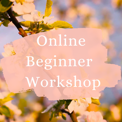 Beginner Workshop