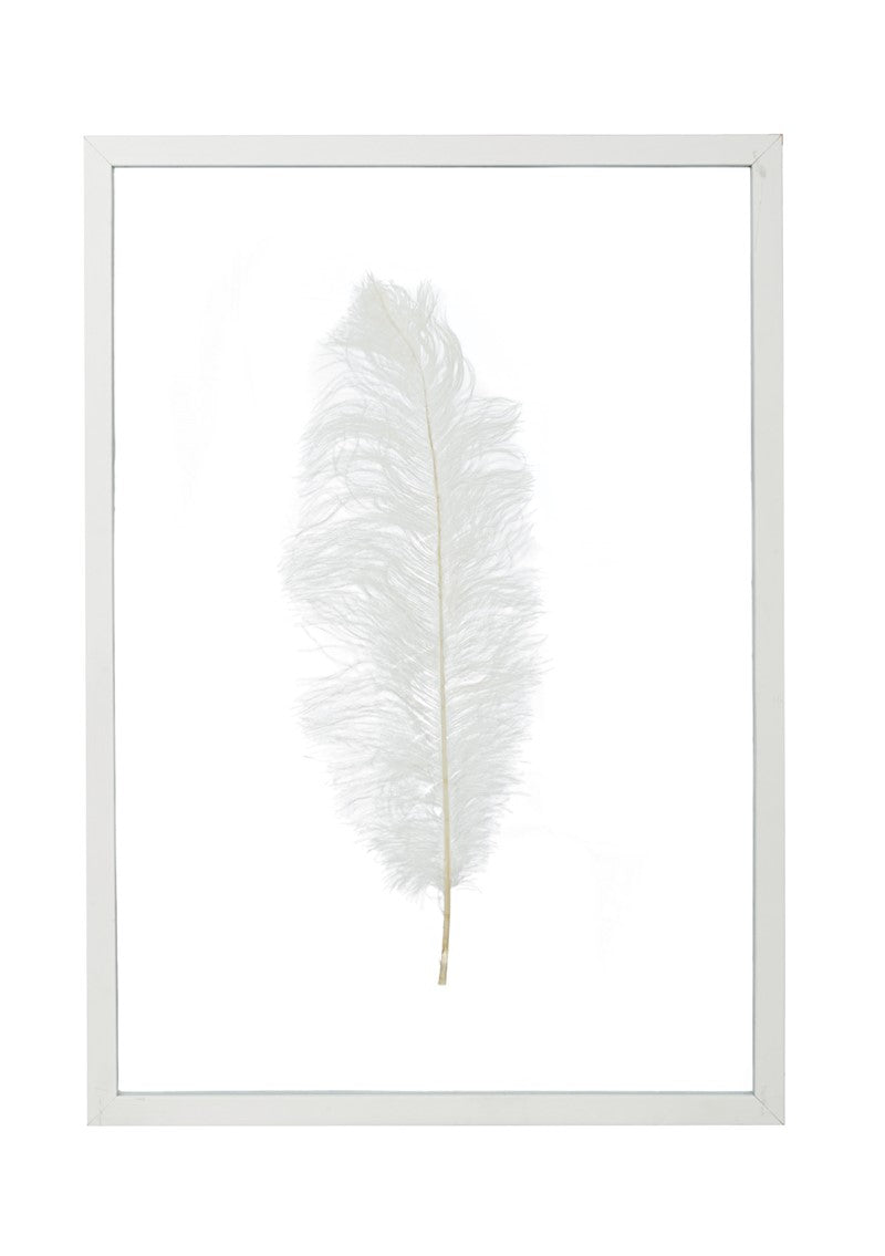 Frame with Feather white - Noirhome