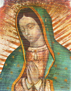 "Our Lady of Guadalupe - Picture 9""x 11"" - ""Bust"" Image"