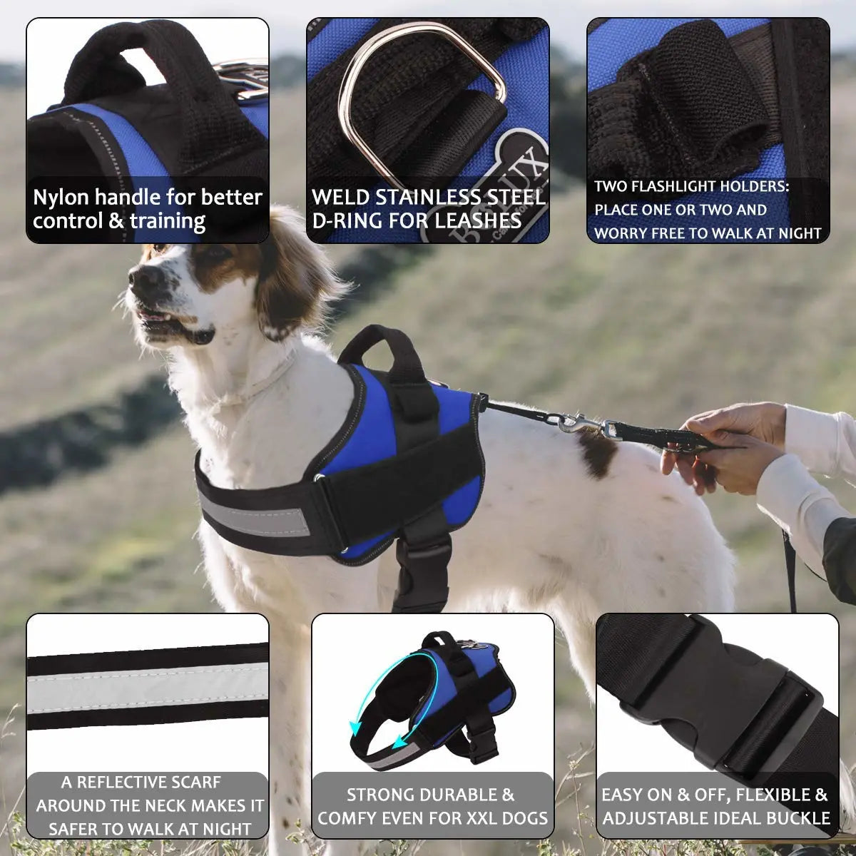 World's Best Dog Harness - 2019 Version