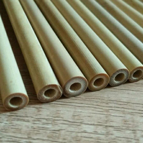 2Pcs/Set Natural Bamboo Straws - wayne-whale