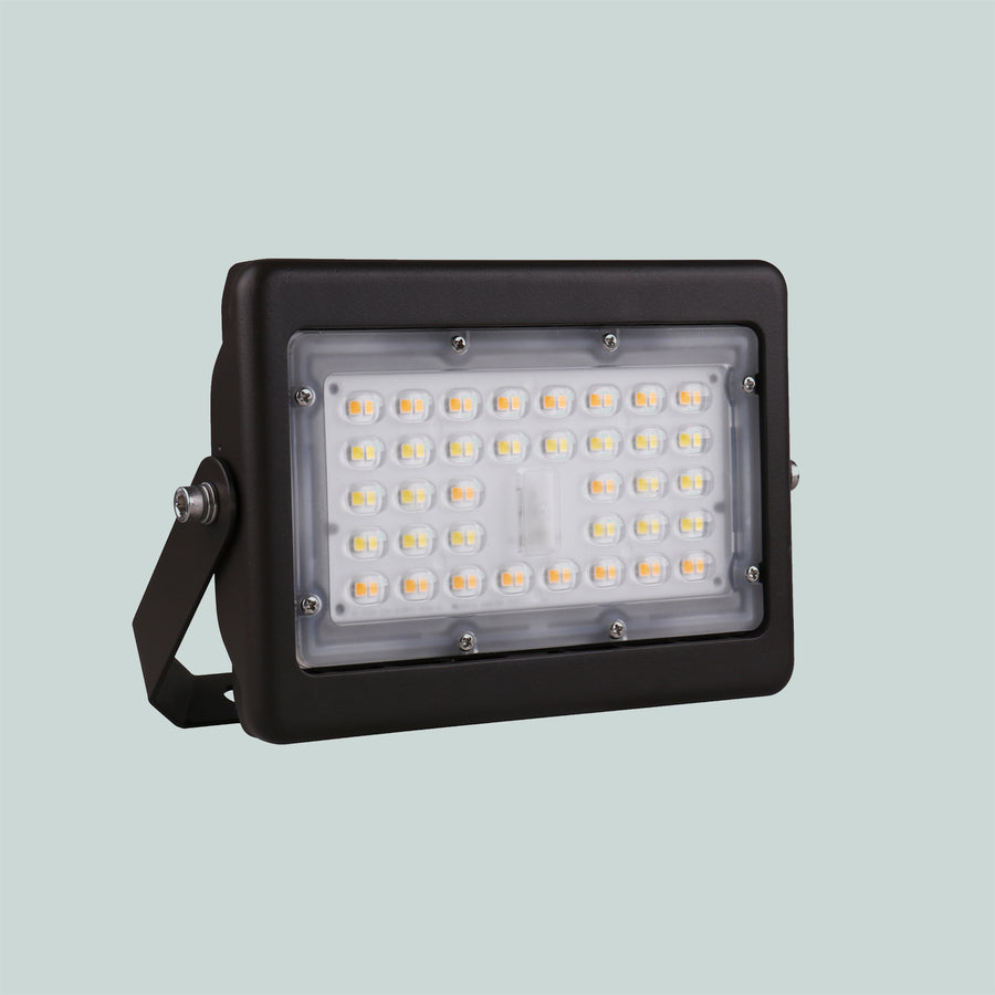 Accent Floodlight