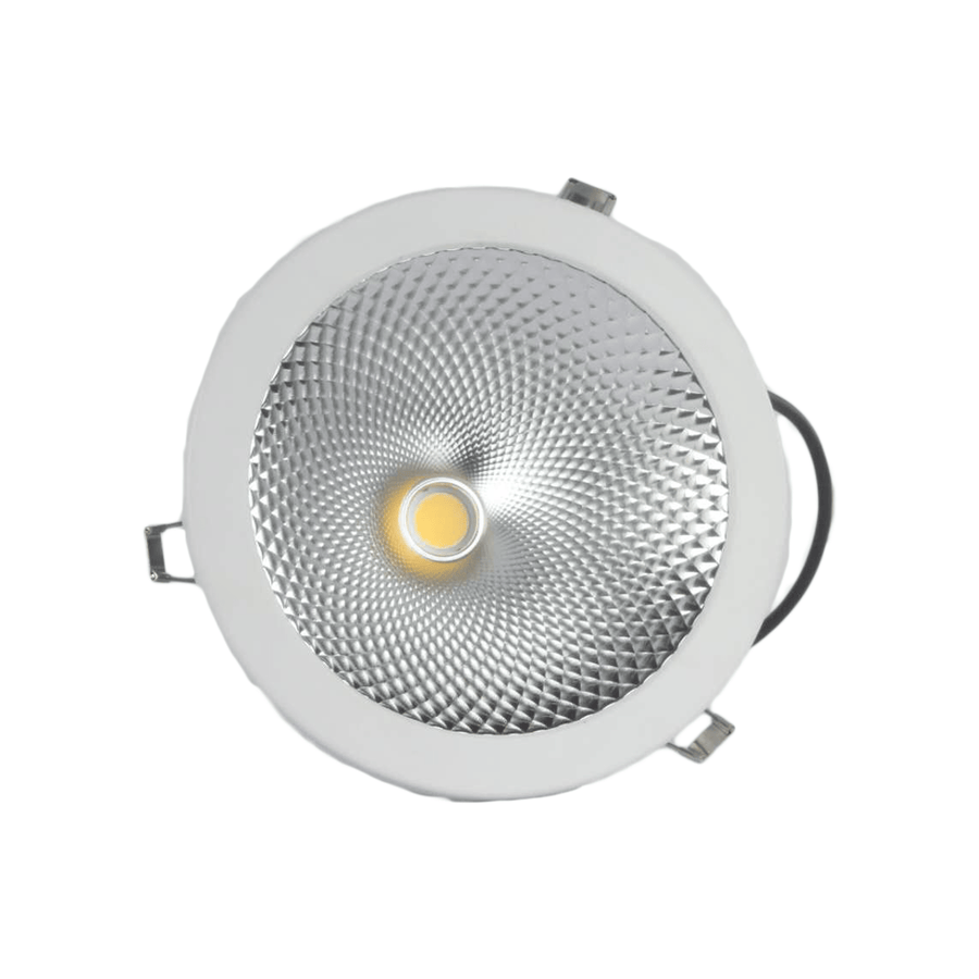 Champ Downlight